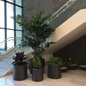 lobby-areas