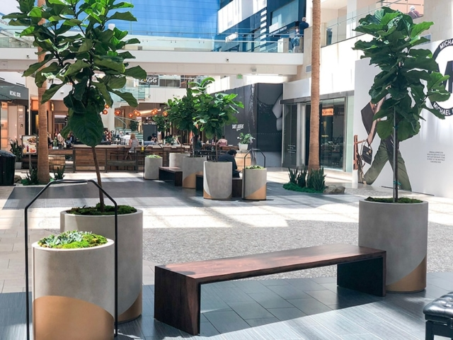 mall Interior plant service southern california 1