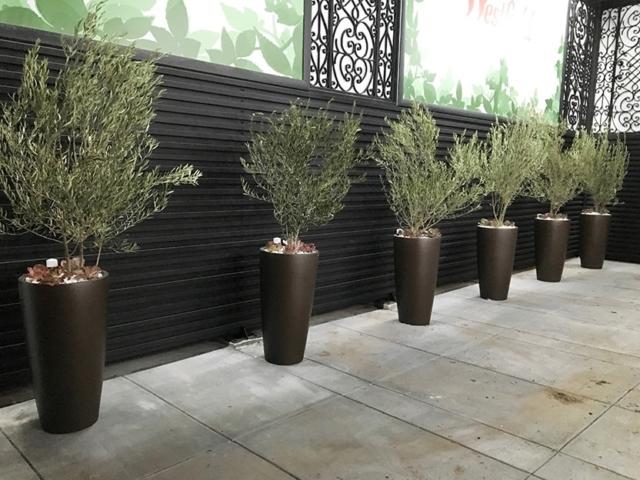 Plant Service