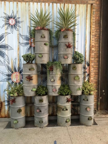 living walls plant service