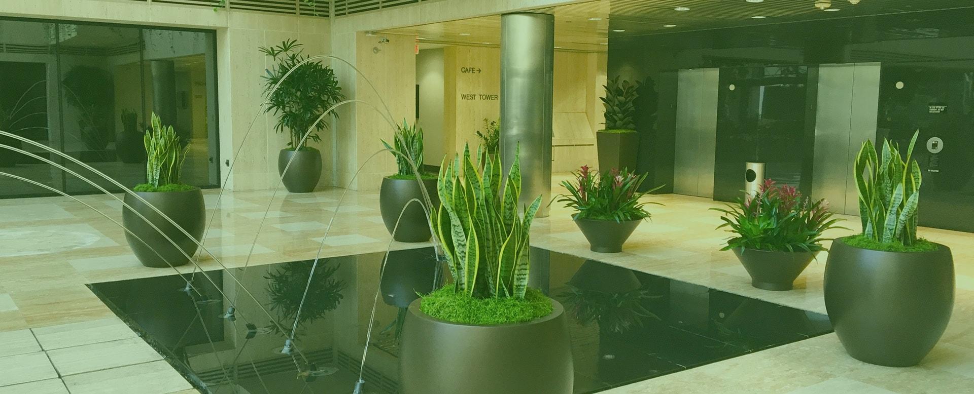 main image interior plant landscaping