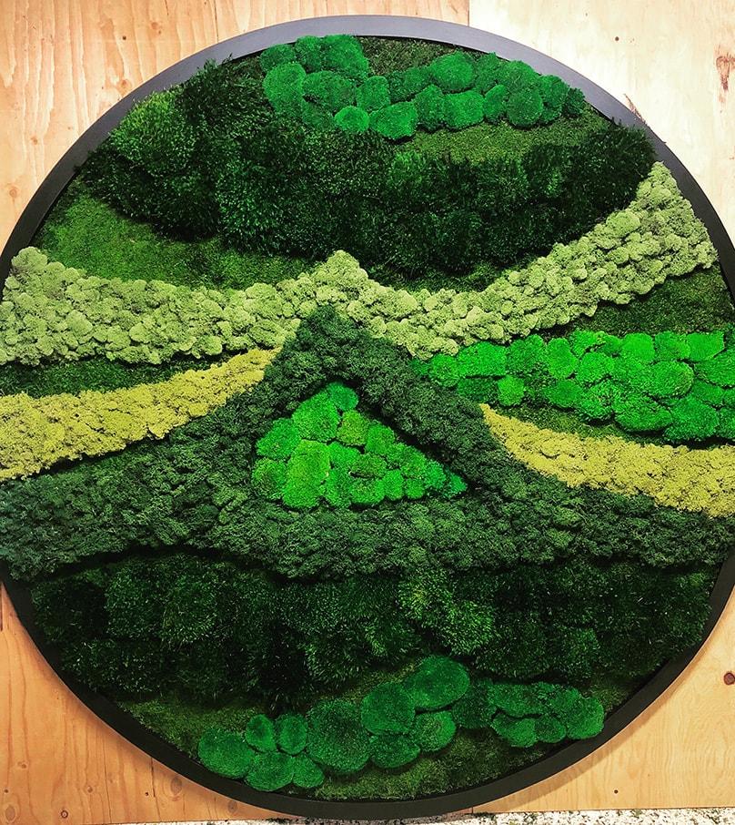 moss interior plant design
