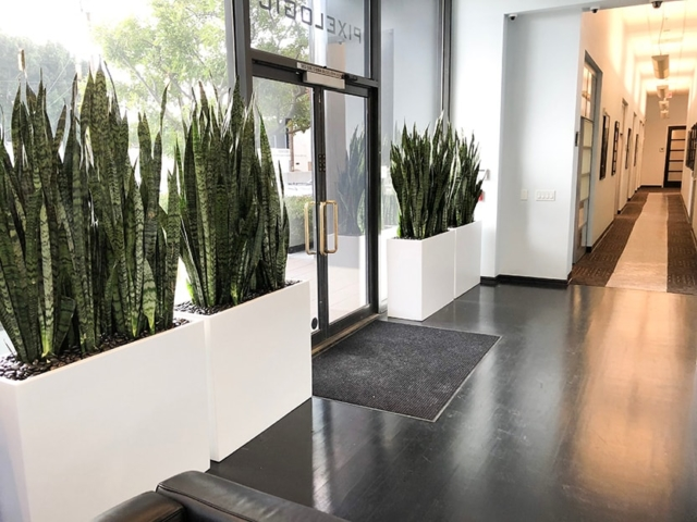 office plant service southern california