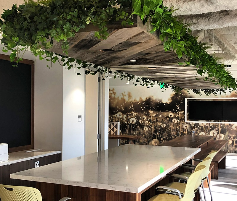 southern california indoor plant design