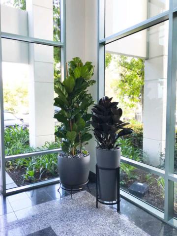 floral arrangement services