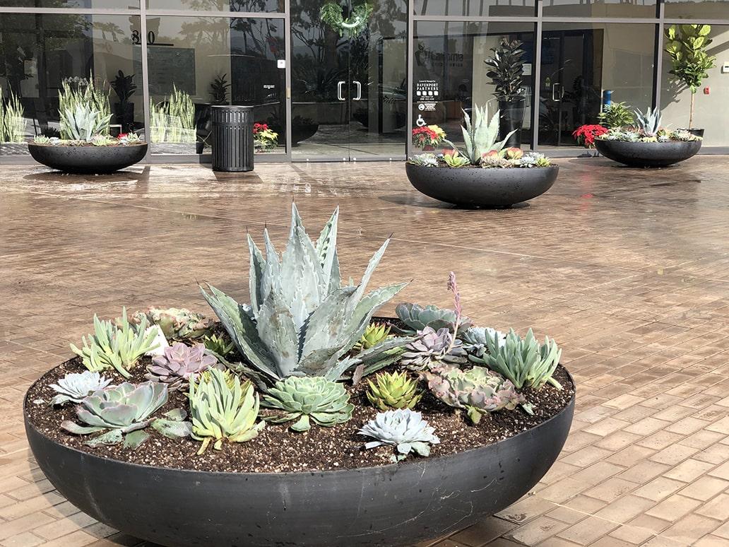 interior retail plant design california
