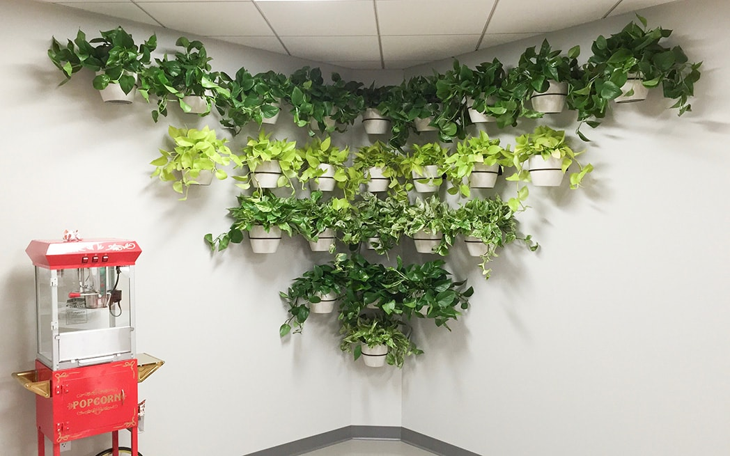 living wall plant service