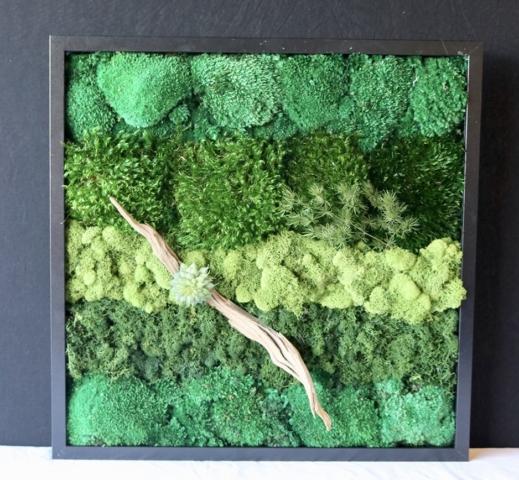 moss plant design