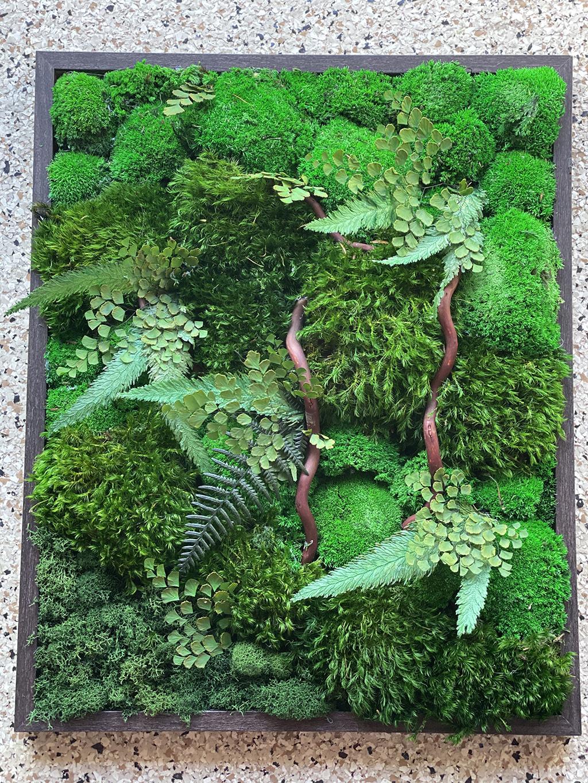 moss wall design