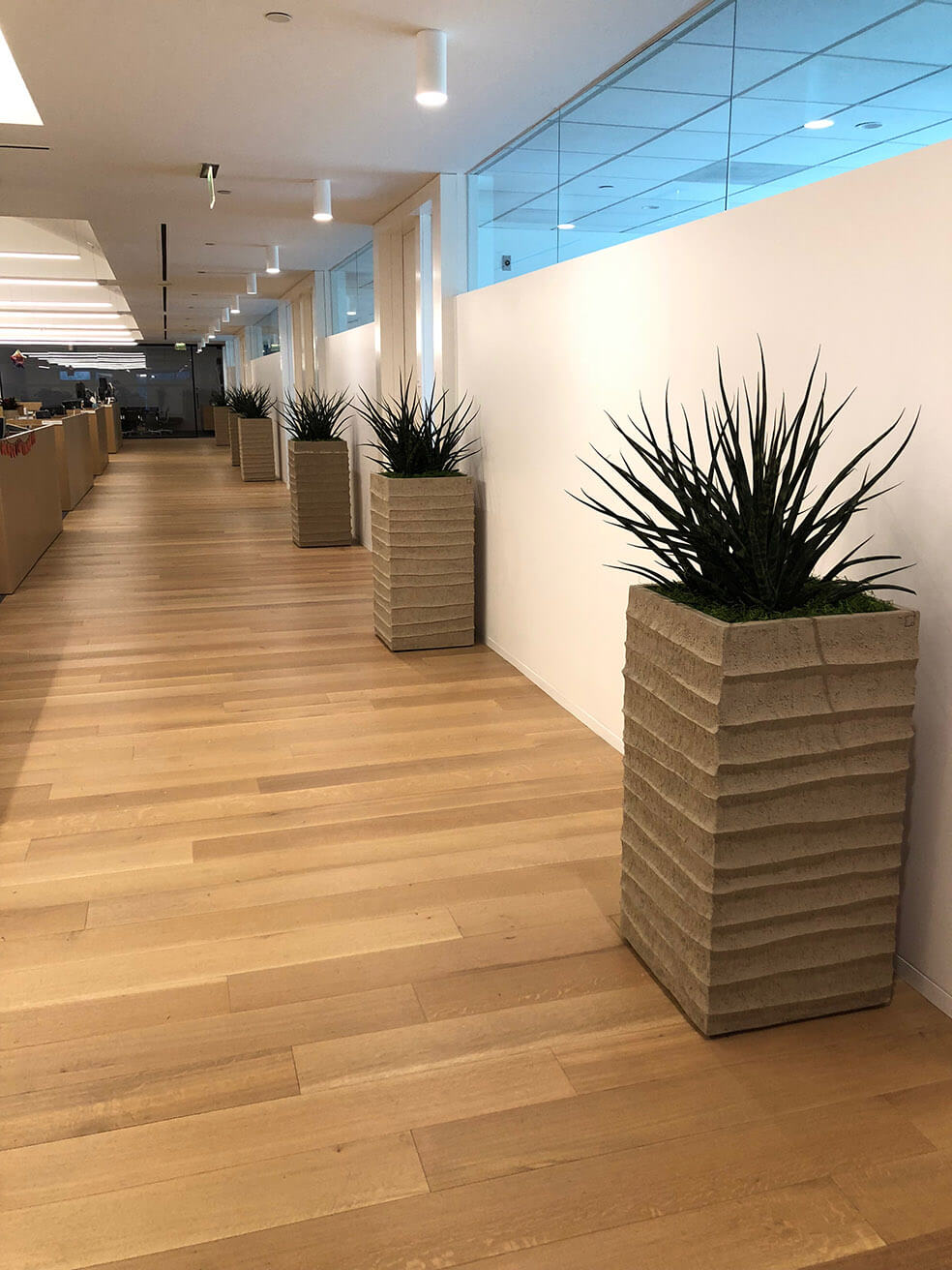 office plant design