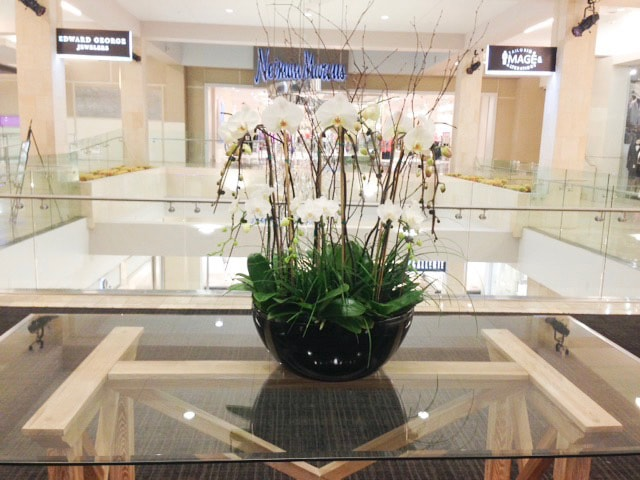 plant arrangement services retail