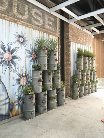 plant wall design