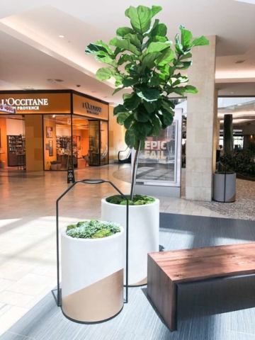 interior retail plant design southern california