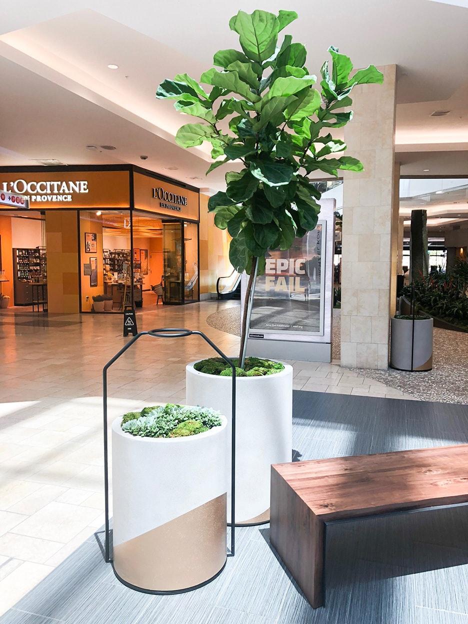 interior retail plant design southern california